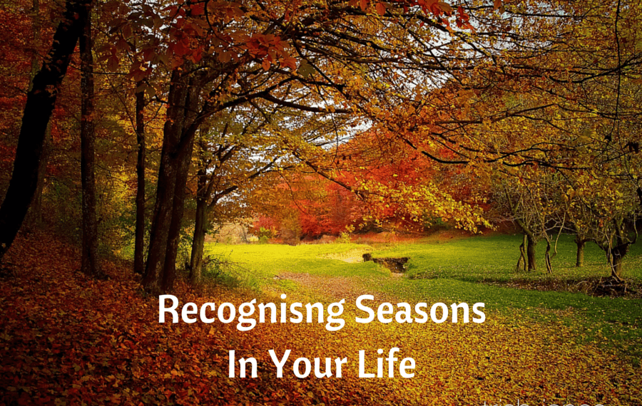 Recognising Seasons In Our Lives
